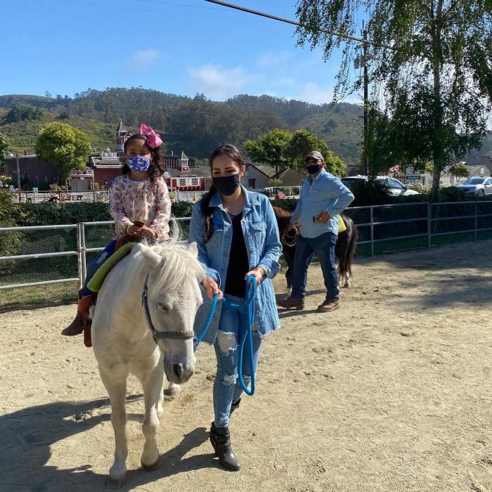 pony rides at Lemos Farm