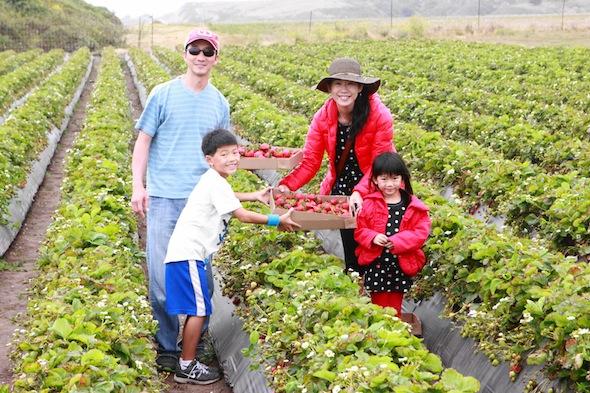 Farm Fresh San Francisco