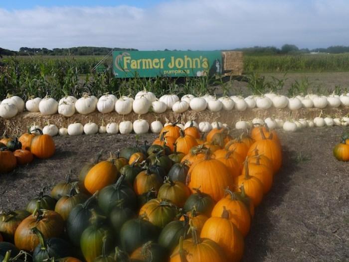 Farmer John Pumpkin Patch in Half Moon Bay