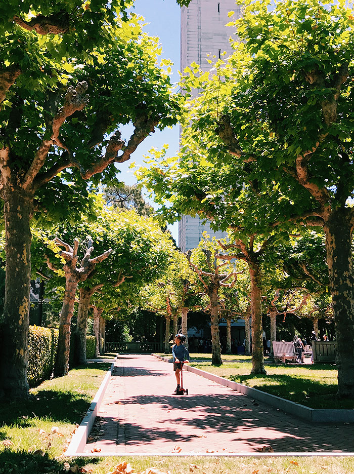 Scooting around Cal