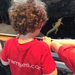 What is the East Bay Preschool Fair?