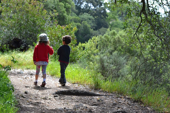 Sunol activities for the winter