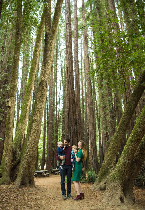 redwoods family walk
