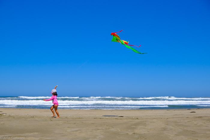 ocean beach kite kid