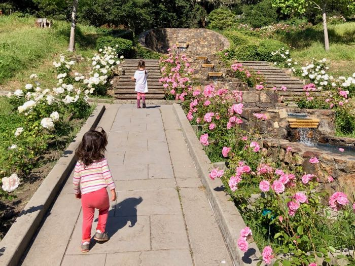 The Morcom Rose Garden with two kids