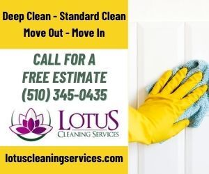 ad for lotus house cleaning