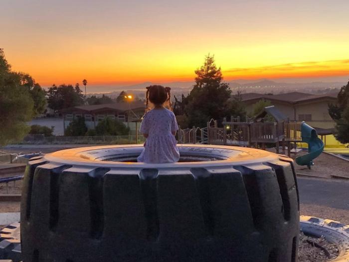 crestmont yard sunset