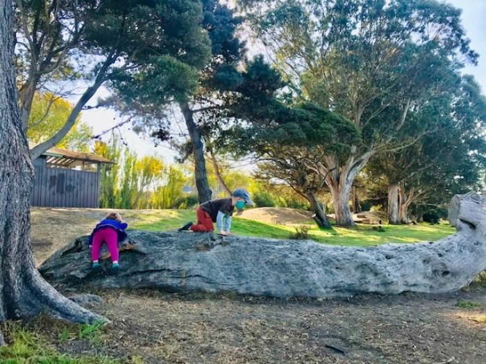 Aquatic Park Toddlers
