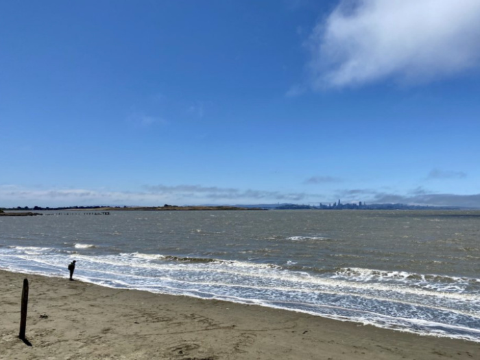 Albany Beach