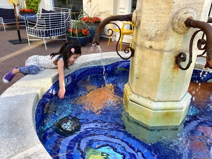 Fountain Lafayette Zoonies