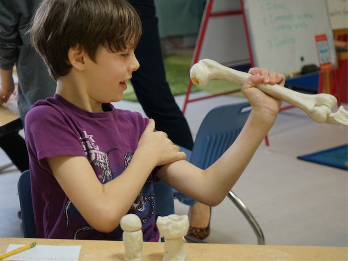 child looking at bone