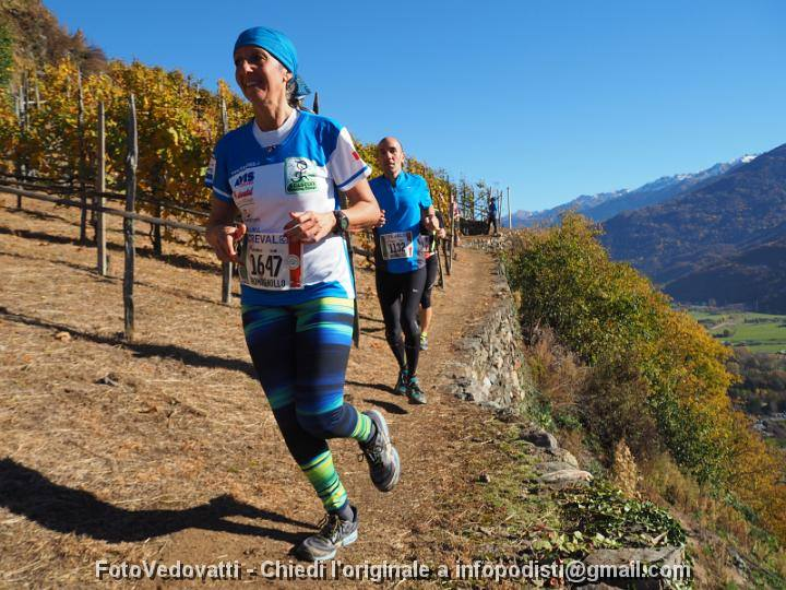 valtellina_wine_trail_2