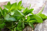 peppermint leaves on wood table