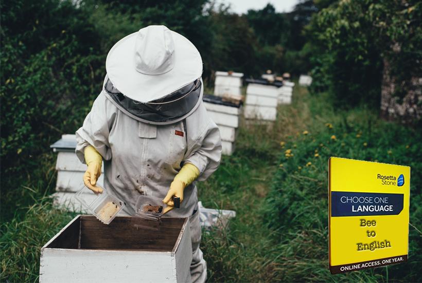 bee keeper in field