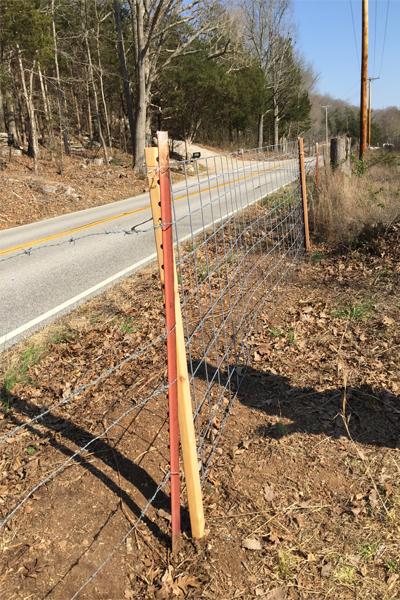 temporary gate 5 dog farm