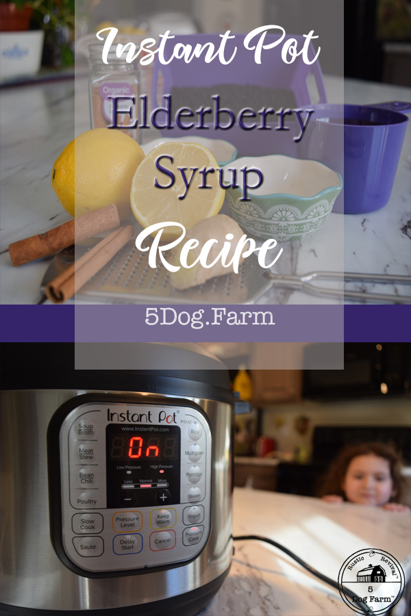 Try this Instant Pot Elderberry Syrup!