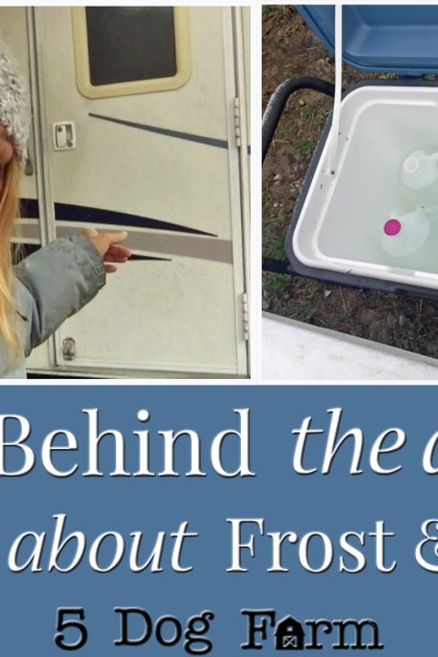 Beat the Freeze 5 Dog Farm