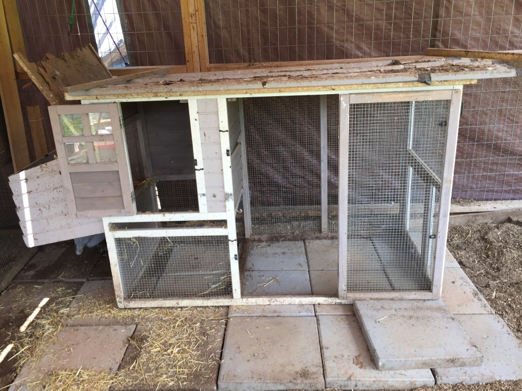 old bird coop cleaned up 5DogFarm