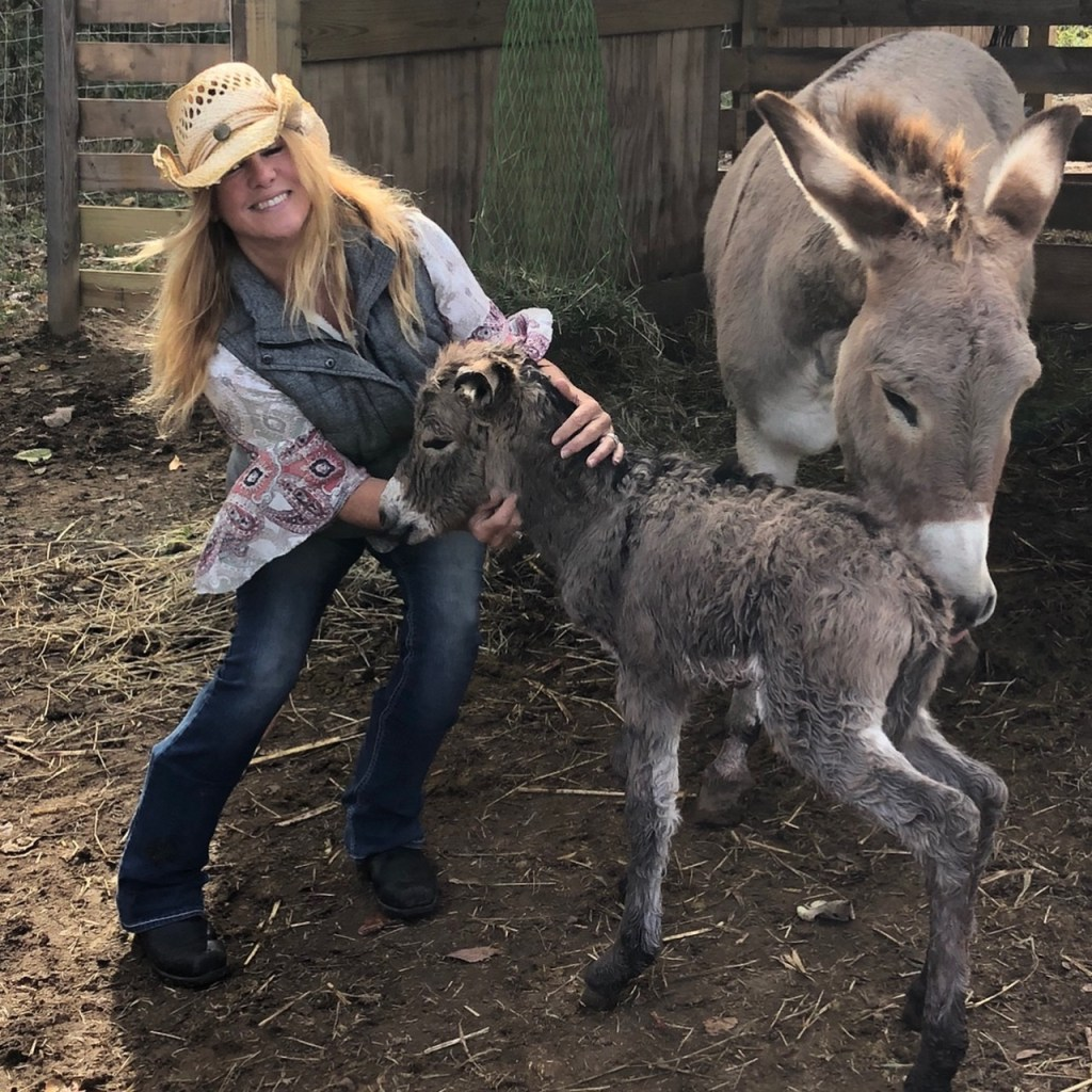 me bonnie and parker the donkeys