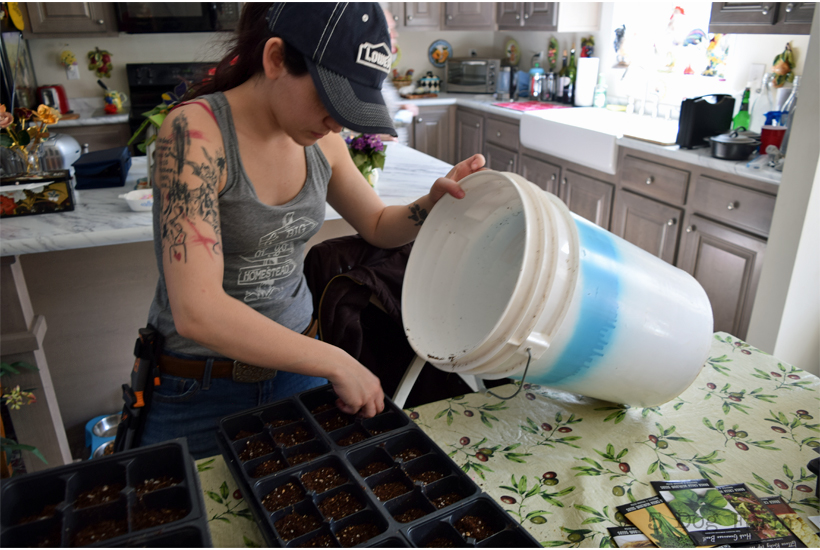 young lady filling seed trays with mix