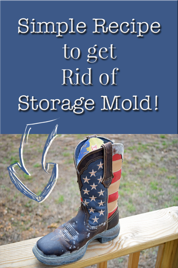 How To Get Rid Of Storage Mold by 5Dog.Farm