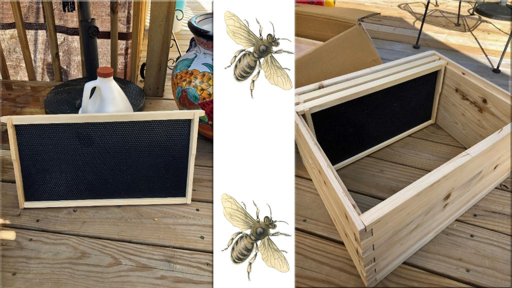 assembled bee hive frames