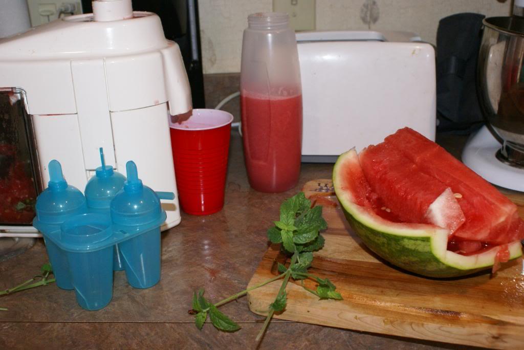 Watermelon Juice | 5DollarDinners.com