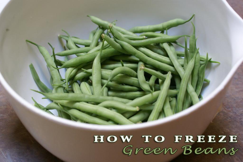 How to Freeze Green Beans | 5DollarDinners.com