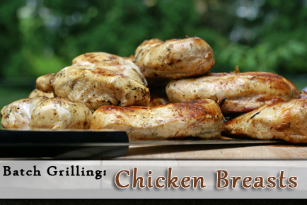 batch-grilled-chicken