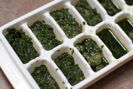 freezing-fresh-herbs
