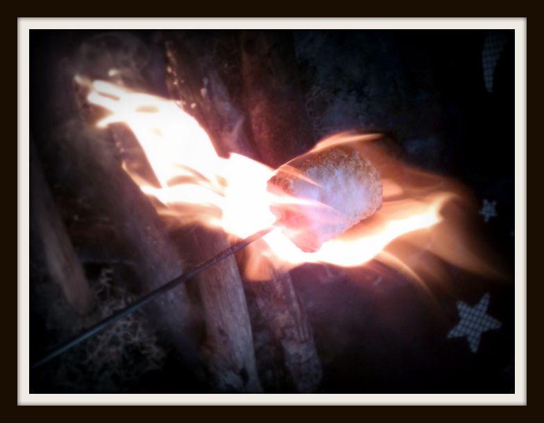 marshmallow roast