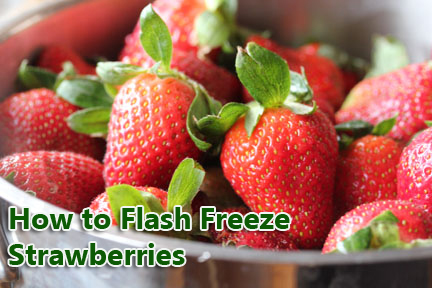 how-to-flash-freeze-strawberries