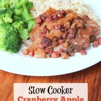 Slow Cooker Cranberry Apple Pork Roast | 5DollarDinners