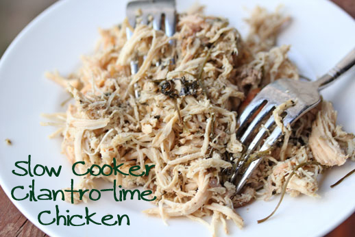 Shredded Chicken Cilantro Lime