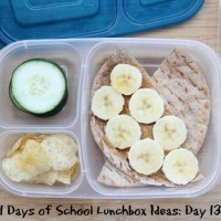 31 Days of School Lunchbox Ideas - Day 13 | 5DollarDinners.com