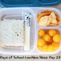 31 Days of School Lunchbox Ideas - Day 23 | 5DollarDinners.com