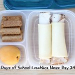 31 Days of School Lunchbox Ideas - Day 24 | 5DollarDinners.com
