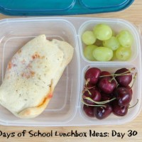 31 Days of School Lunchbox Ideas - Day 30 | 5DollarDinners.com