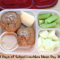 31 Days of School Lunchbox Ideas - Day 31 | 5DollarDinners.com