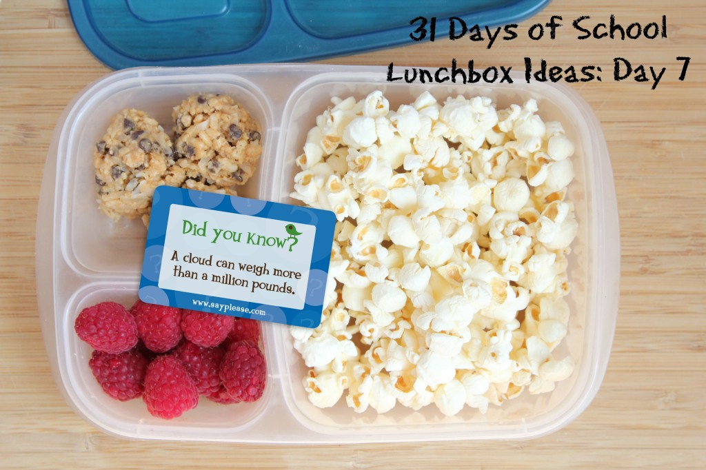 31 Days of School Lunchbox Ideas: Day 7 | 5DollarDinners.com