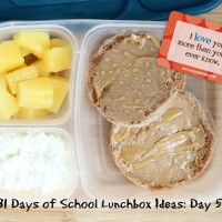 31 Days of School Lunchbox Ideas: Day 5 | 5DollarDinners.com
