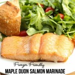 Maple Dijon Salmon Marinade Recipe on 5DollarDinners.com