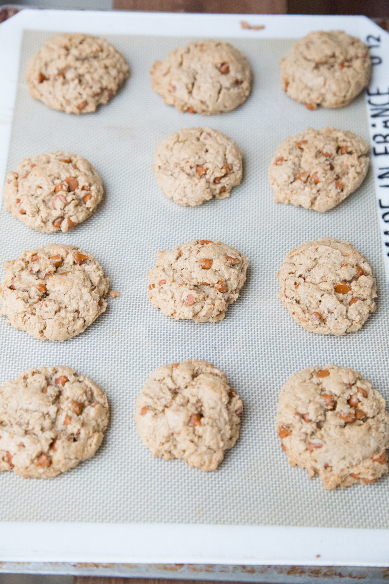 Oatmeal Cinnamon Chip Cookies Recipe | 5DollarDinners.com-2
