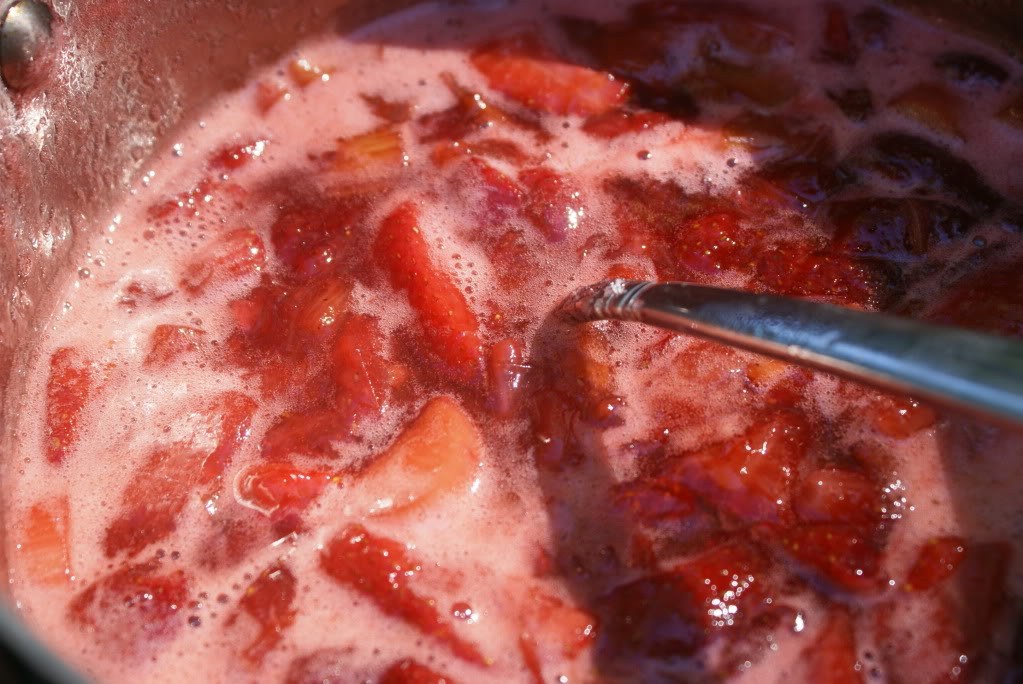 Strawberry Raspberry Rhubarb Jam | 5DollarDinners.com