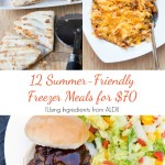 12 Summer Friendly Freezer Meals for $70 from 5DollarDinners.com