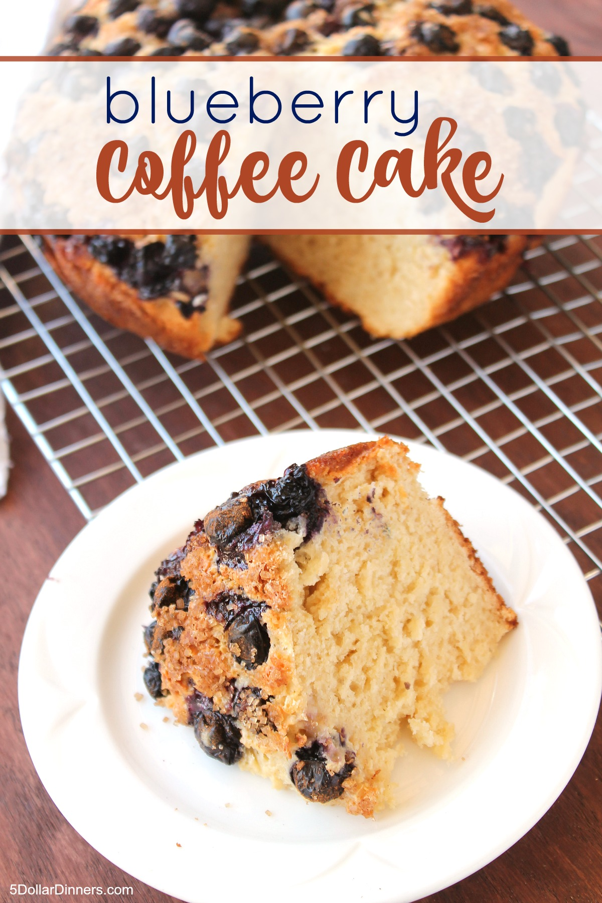 Blueberry Coffee Cake from 5DollarDinners.com