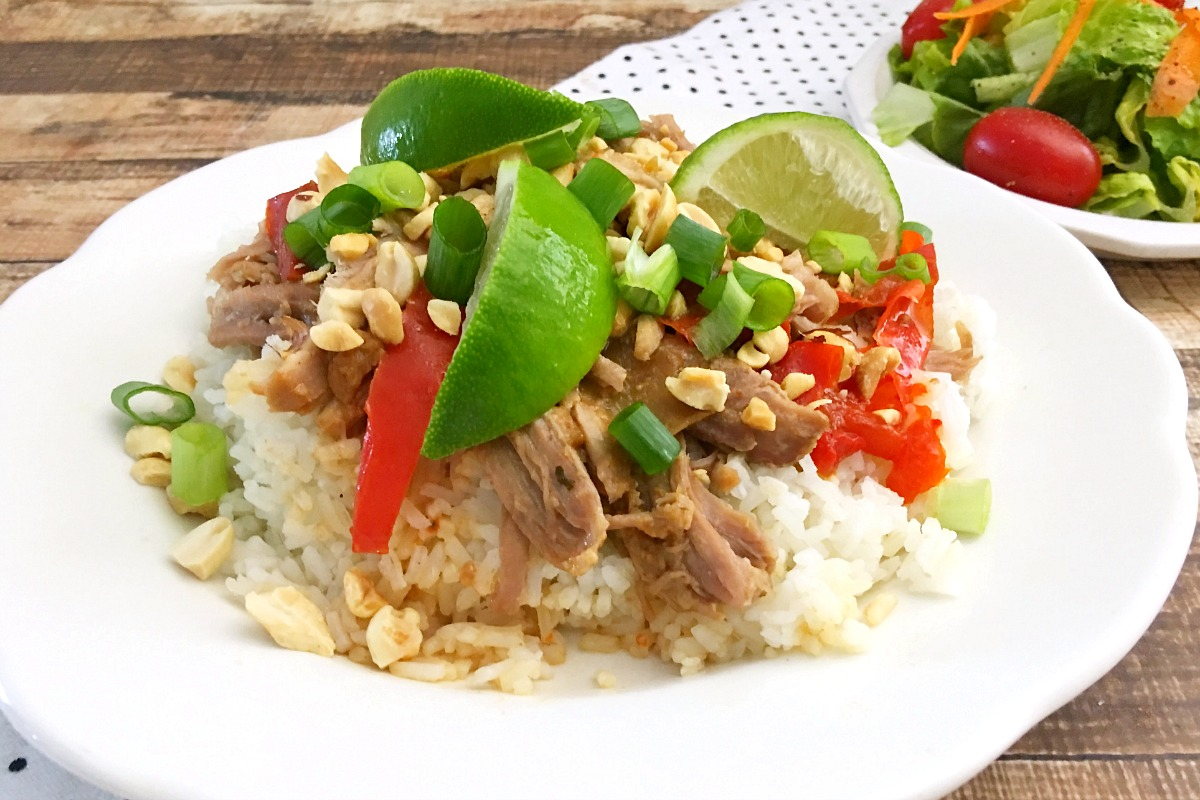 Slow Cooker Shredded Pork with Thai Peanut Sauce from 5DollarDinners.com