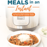 Freezer Meals in an Instant