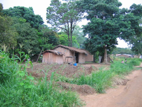 A typical Malawi home