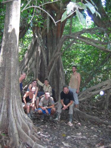 Jungle trekking group